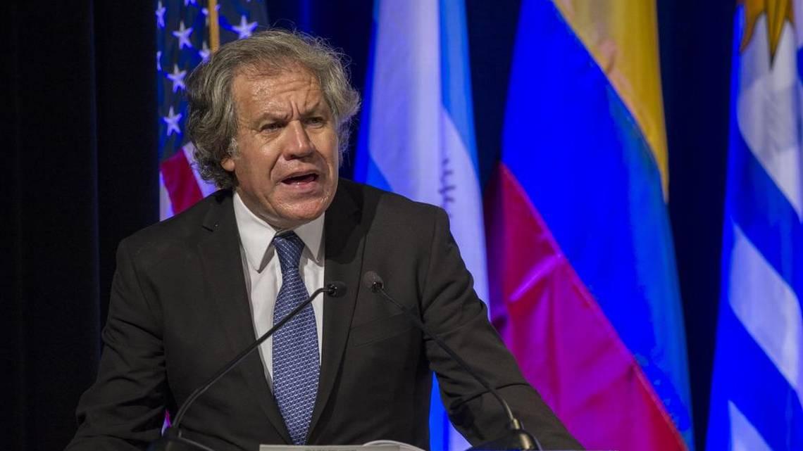Gran llorona mundial de la derecha por convocatoria a elecciones presidenciales en Venezuela